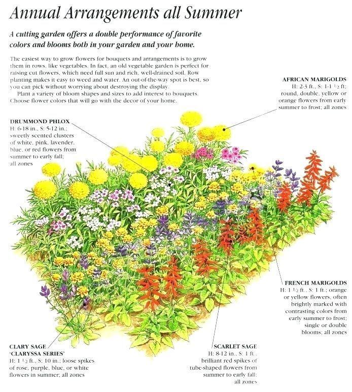Enchanting Flower Garden Plans Bed Ideas Zone 9 Designs ...