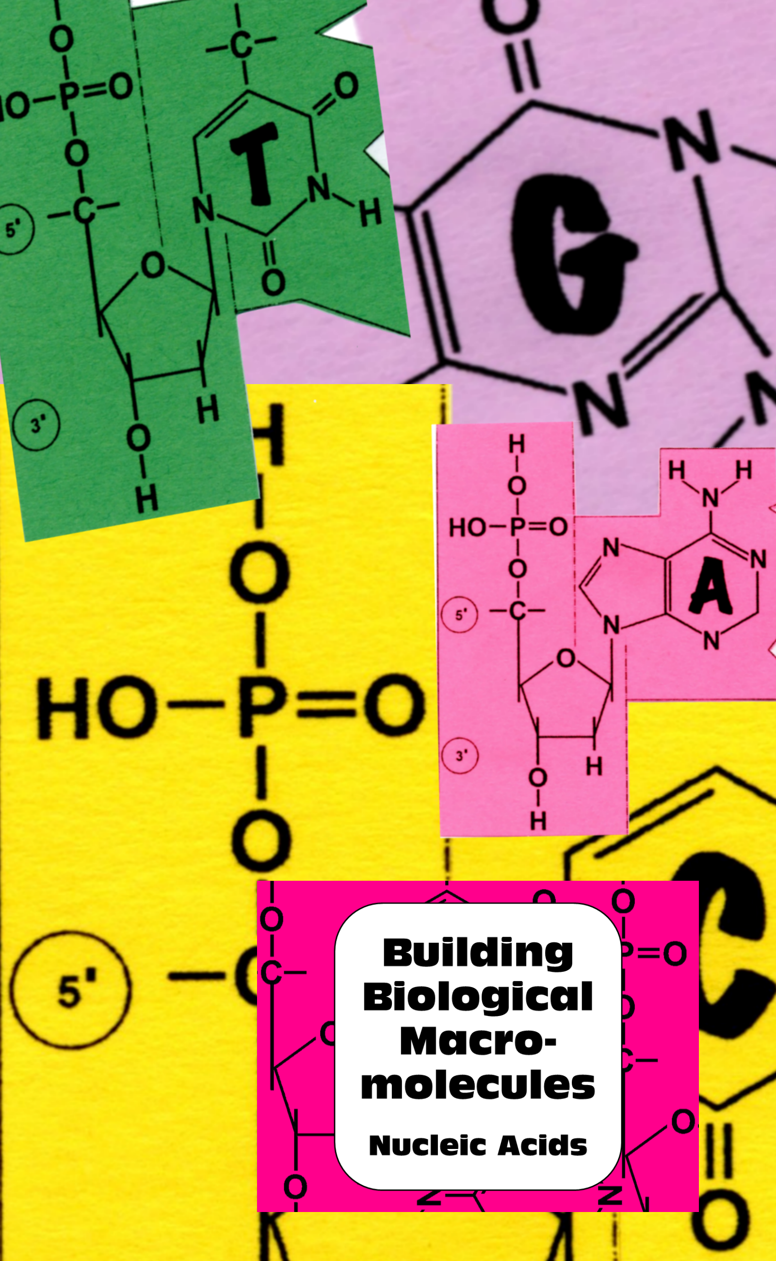 Biological Molecules What Are The Building Blocks Of Life