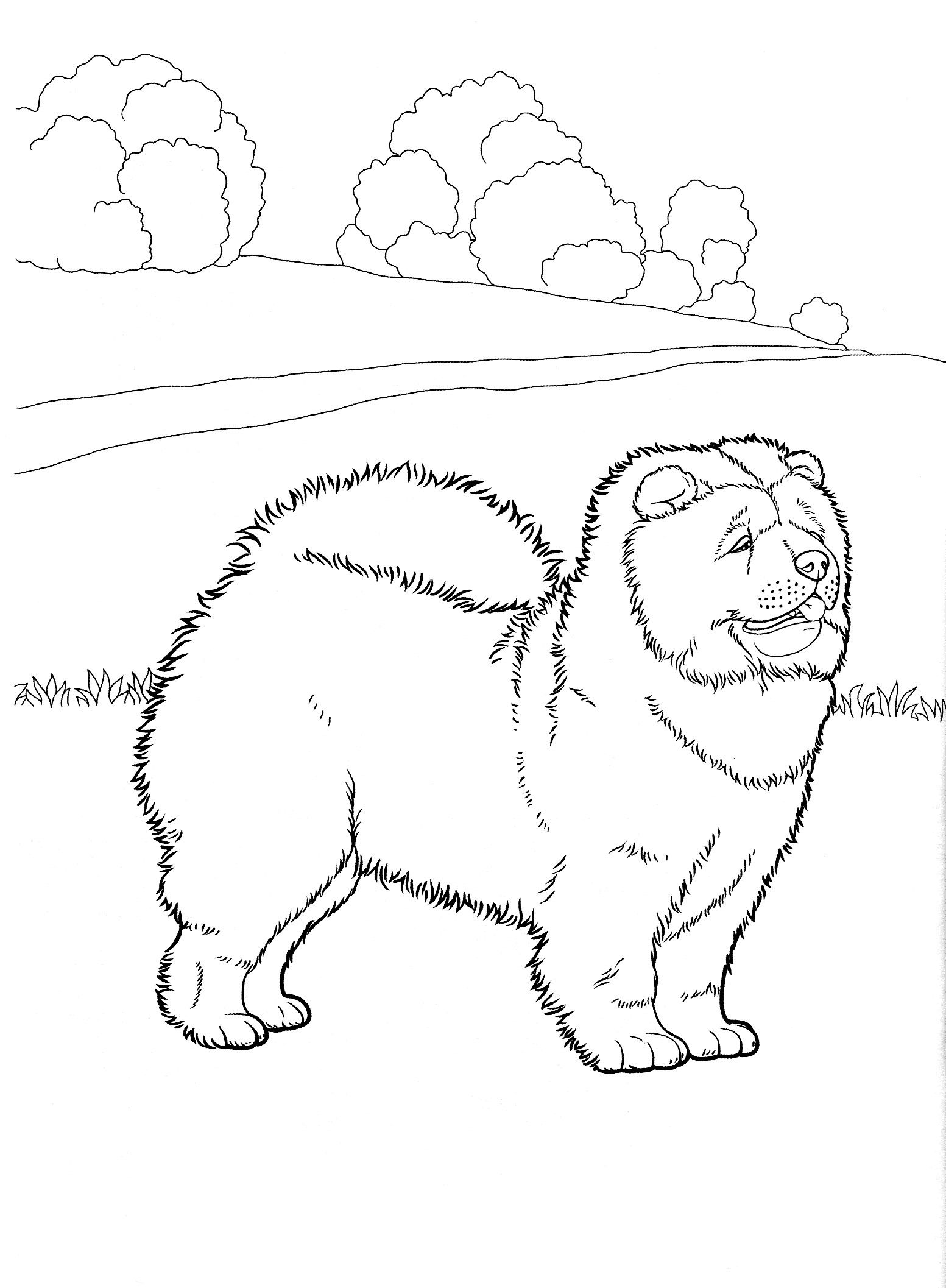 dog_coloring_pages_3 Teenagers coloring pages   favorite Dog ...