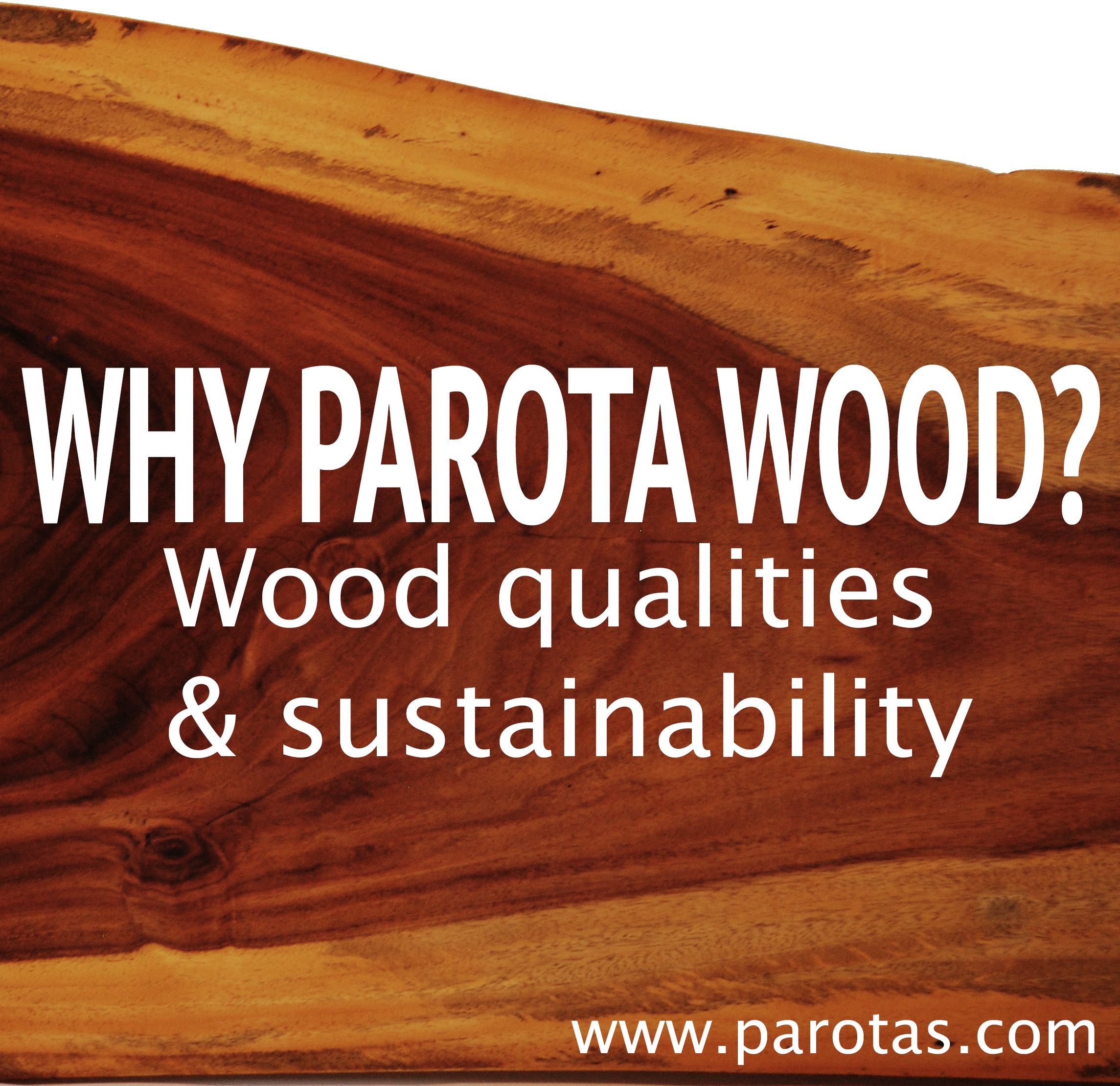 Why Work With Parota Wood Here We Explain The Wood Qualities And  # Muebles Bosques Sostenibles