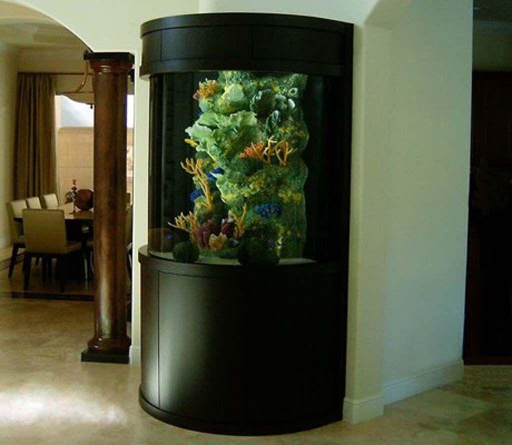 ideas for aquarium décor: fish tank idea in the corner