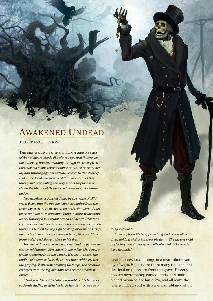 Dungeons, Dragons Races, D&d Dungeons, Dragons, Dungeons, Dragons Homebrew