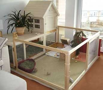 how to build your own indoor rabbit cage