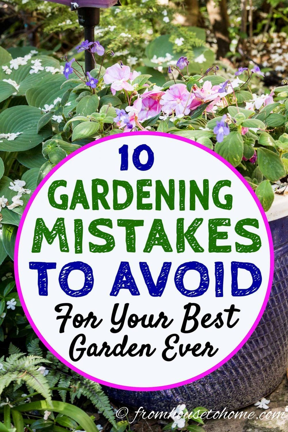 Learn which landscaping mistakes to avoid. Whether you're a beginning gardener or a seasoned pro, these tips for preventing gardening mistakes will help you create your best garden ever. #fromhousetohome #gardeningtips #gardening #gardenlandscaping  #gardeningforbeginners #summerinspiration
