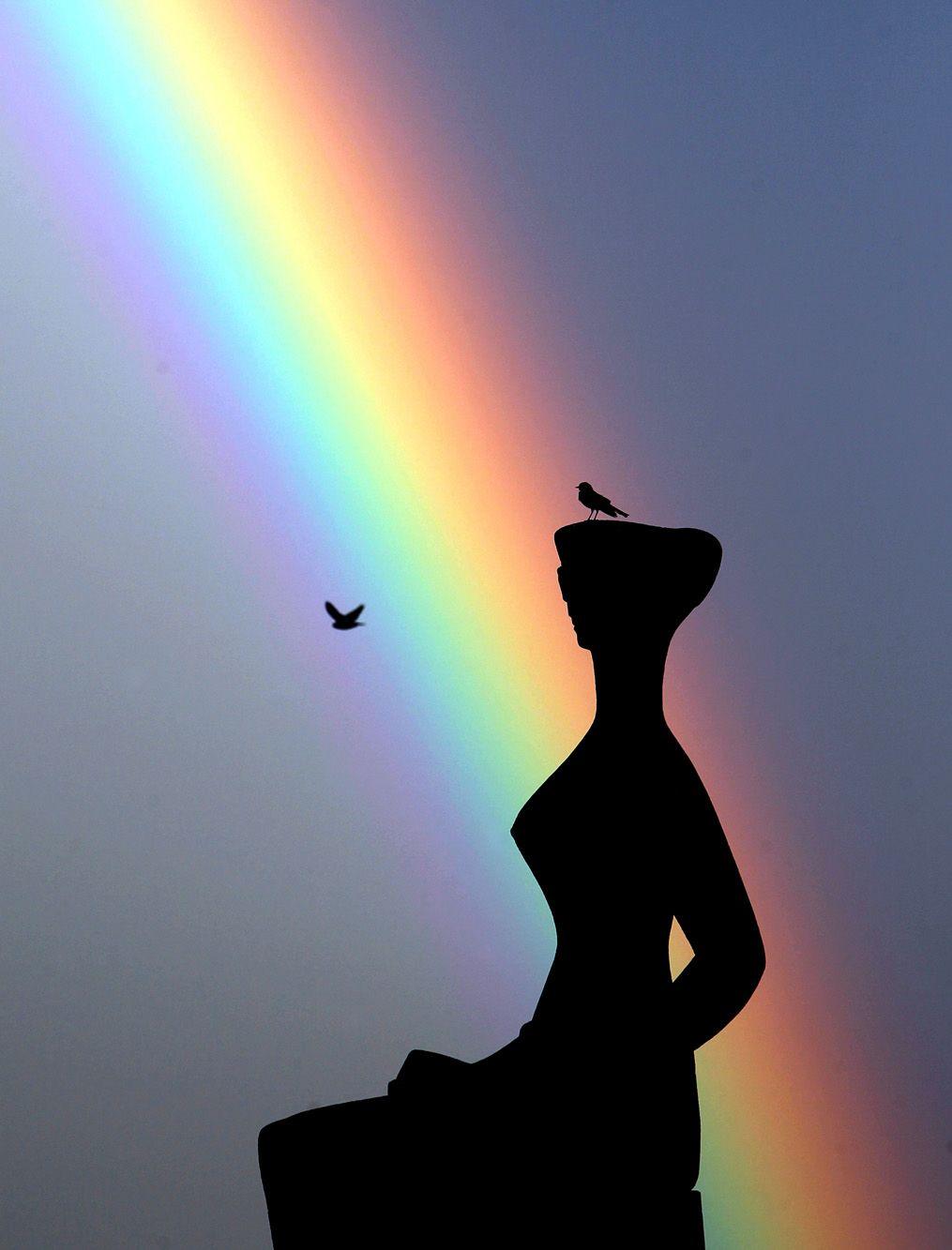 Resultado de imagem para arco iris em brasilia