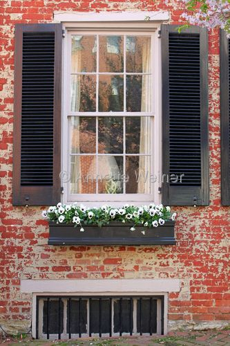 Window Boxes Brick House With Black Shutters And Black