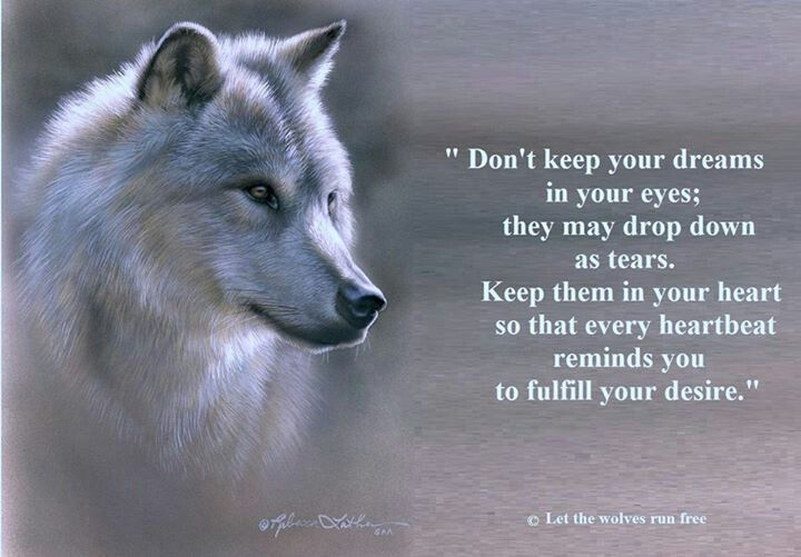 Pin By Vishay Sukhdeo On Wolves Pinterest Wolf Quotes Quotes