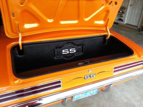 Alien Enclosures 69 Super Sport Camaro Firebird Custom