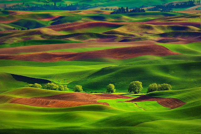 palouse, washington state.