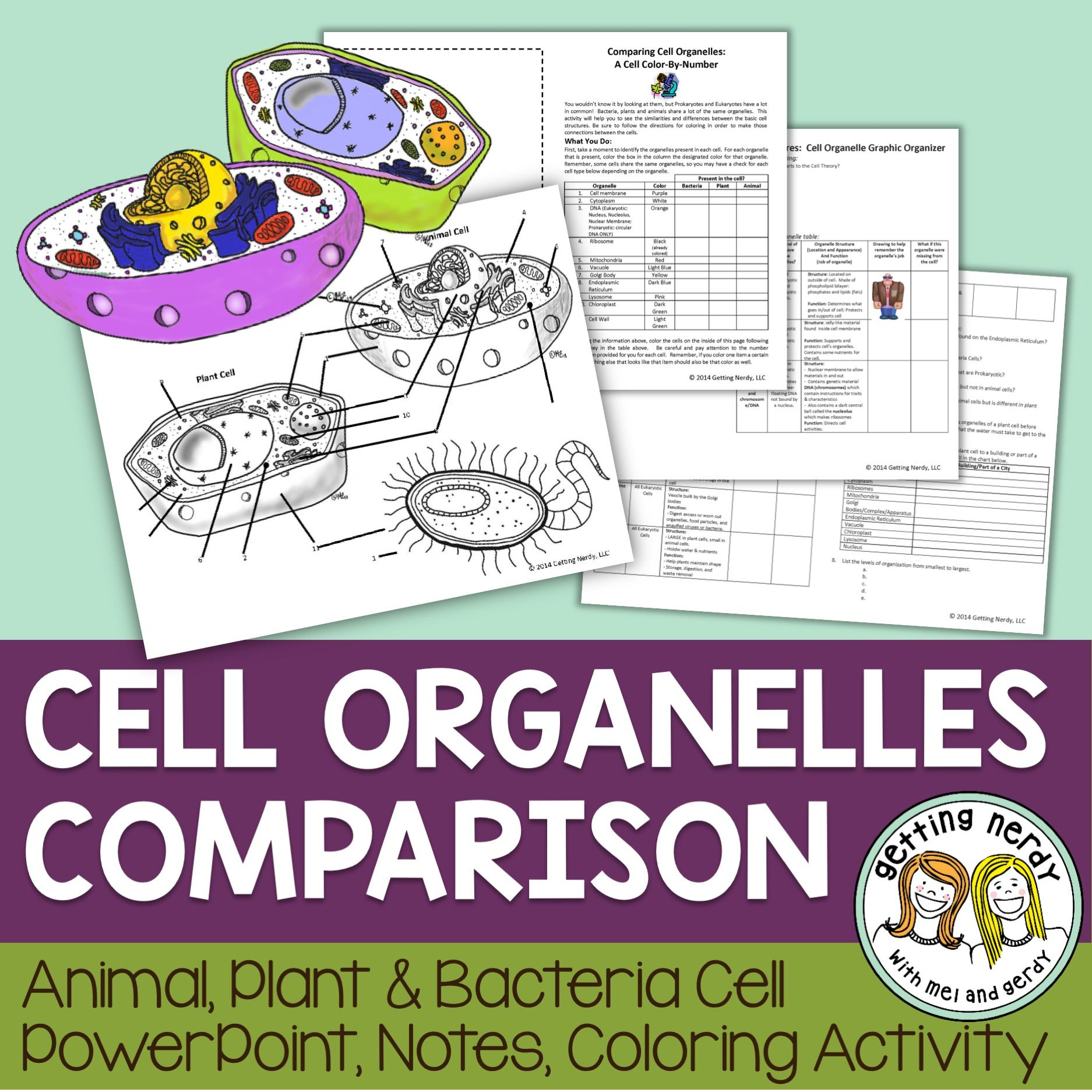 Hands-on class activities on the cell - sciencegeekgirl.com