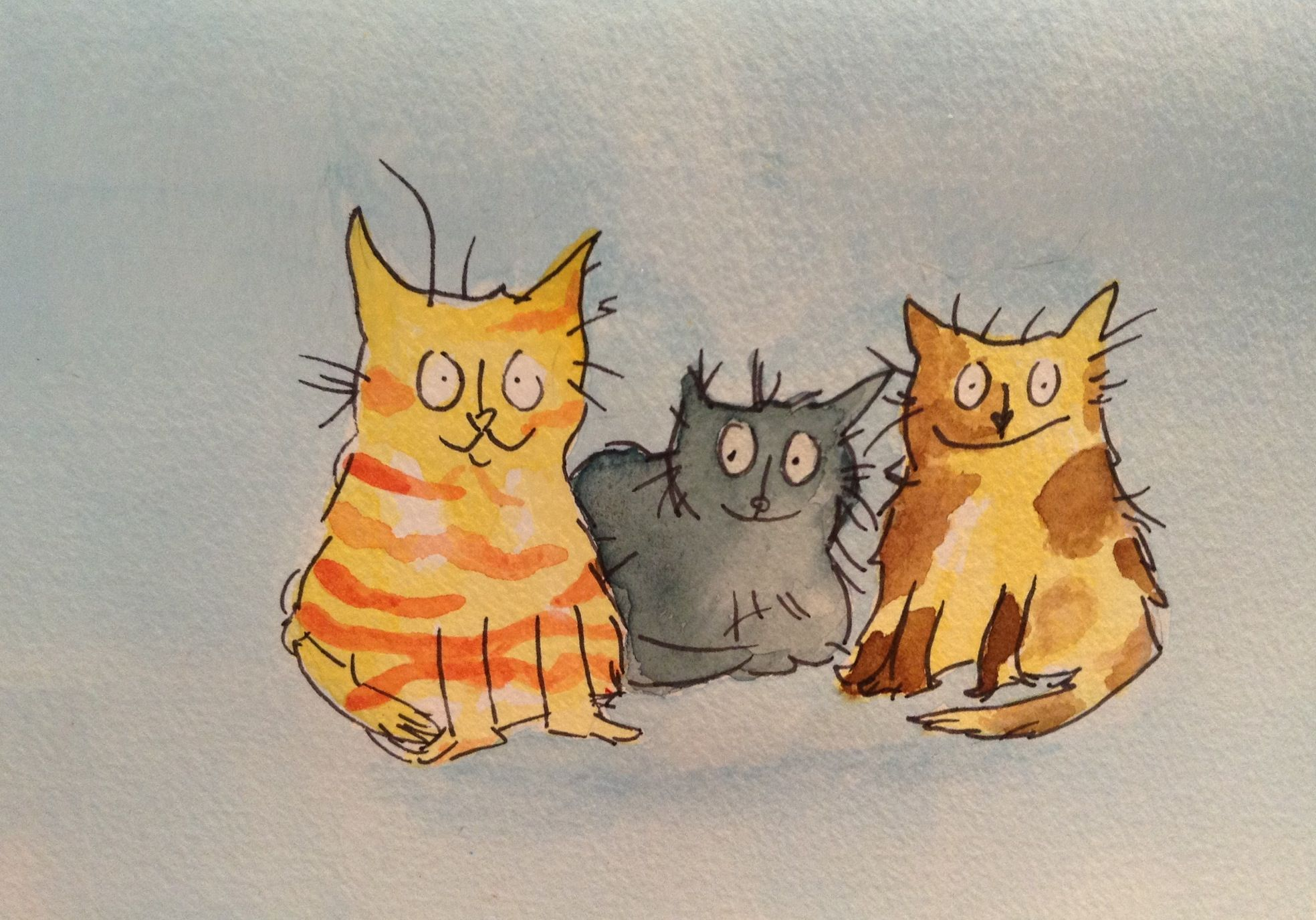 My Water Colour Cats Quentin Blake Style Cat Illustration