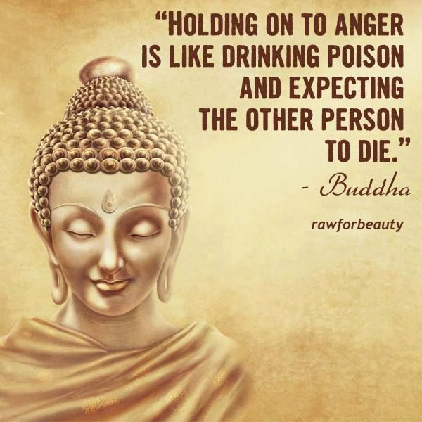 Quotes From Buddha | Buddha Quote Holding On To Anger Is Like Drinking Poison And