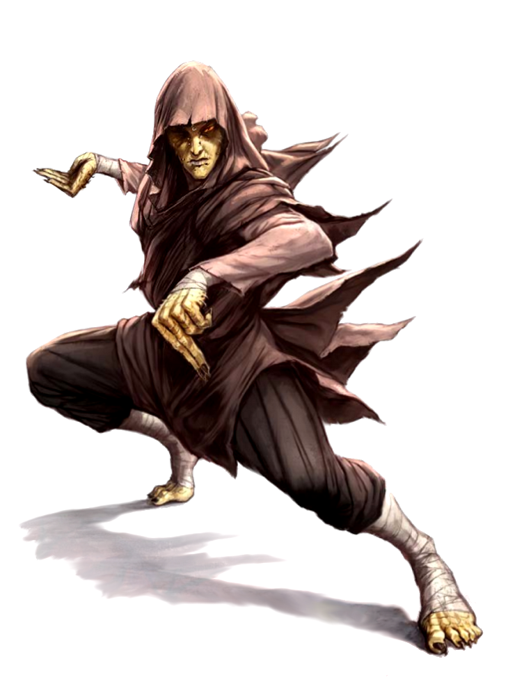 Male Nagaji Scaled Fist Monk - Pathfinder PFRPG DND D&D ...  Male Nagaji Sca...