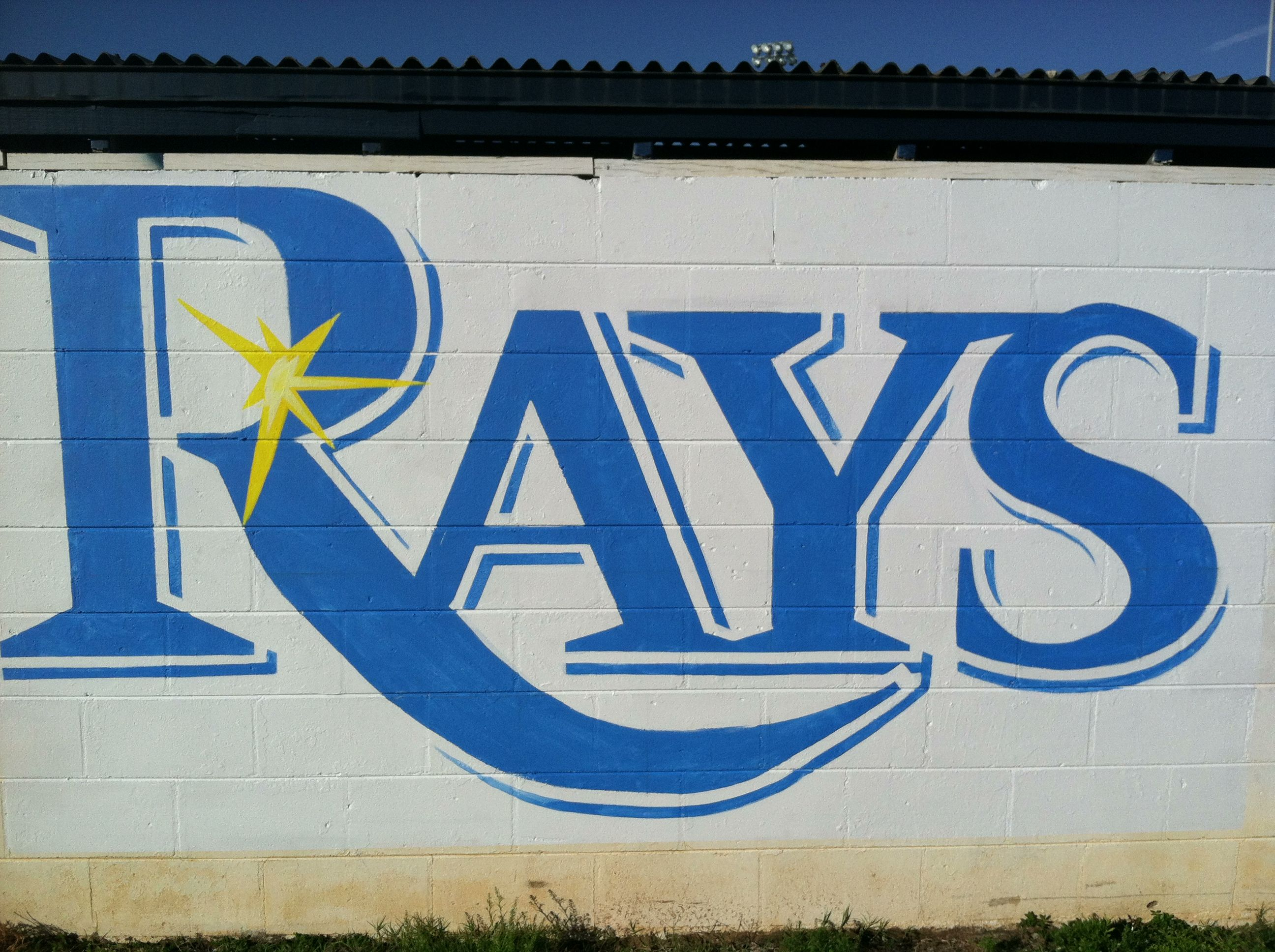 tampa bay rays logo pictures | Tampa Mural Painter Starts a New Mural – Tampa Bay Rays Logo