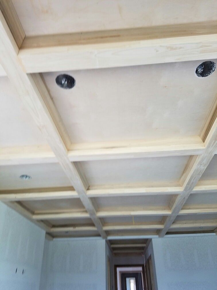 Coffin Ceiling Ceiling House Home