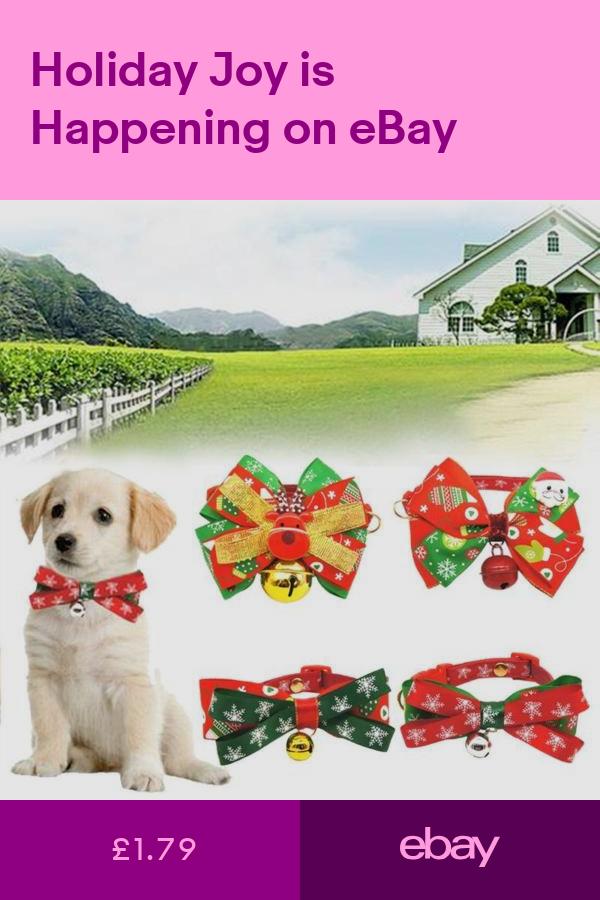 Collars Pet Supplies Ebay Cat Accessories