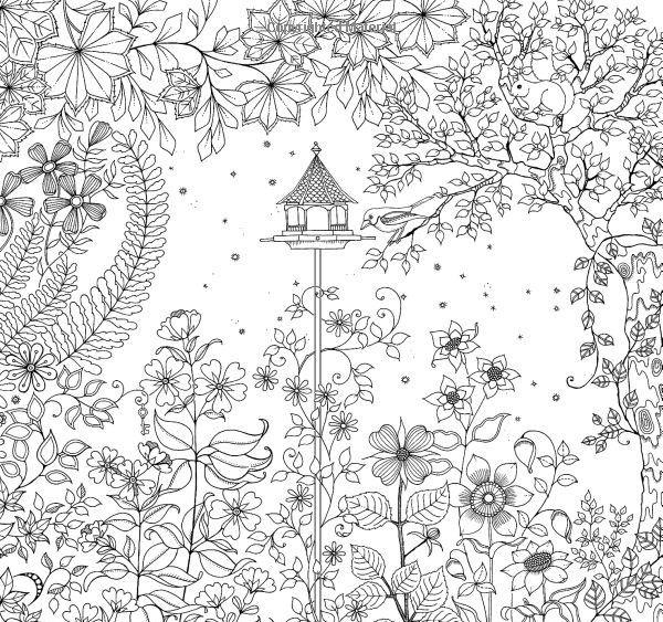 Fleurie Jardin Secret Coloriage Coloriage Adulte Et