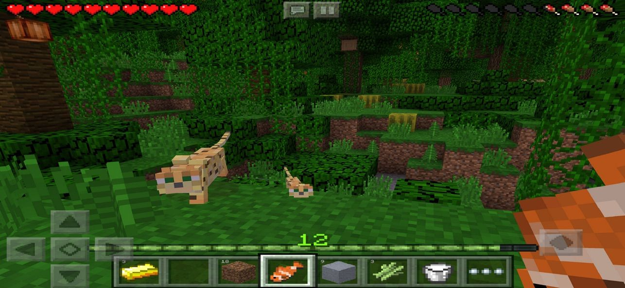 Minecraft on the App Store Roblox