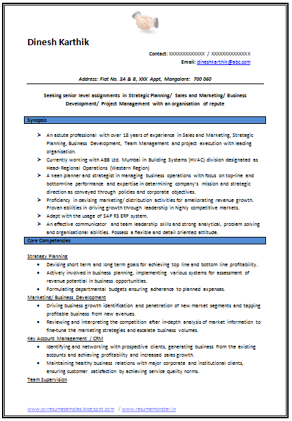 Resume Samples For Experienced Professionals Pdf Writing And
