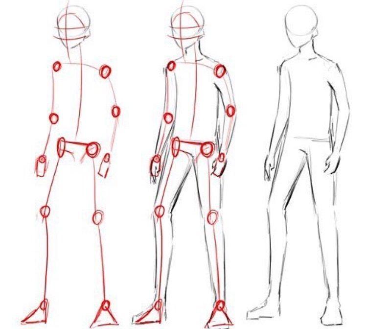 Atractivo Anatomía Masculina Animado Inspiración - Anatomía de Las ...