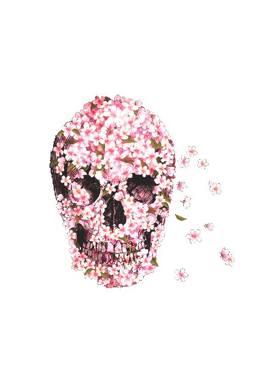 Flower Skull Pretty Petals Skull Artwork Skull Wallpaper Iphone Skull Wallpaper