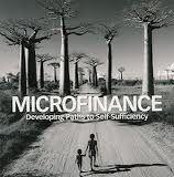 I'd like to start a microcredit group