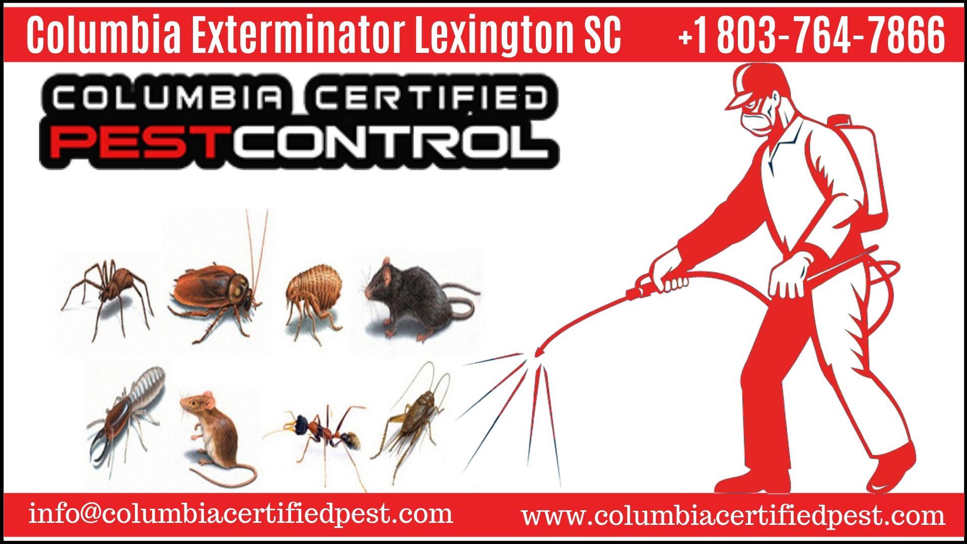 Columbia Exterminator Pest Control Pest Infestation Mosquito Pest Control