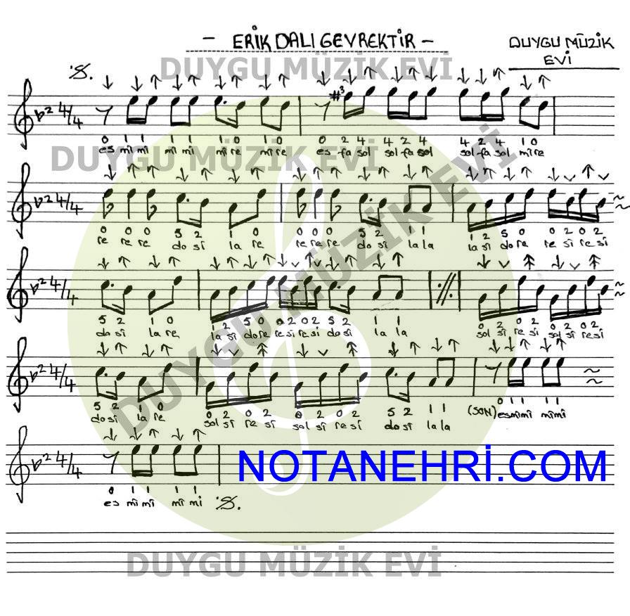 Erik Dali Gevrektir Notalari Notalara Dokulmus Muzik Erik Muzik Notalari