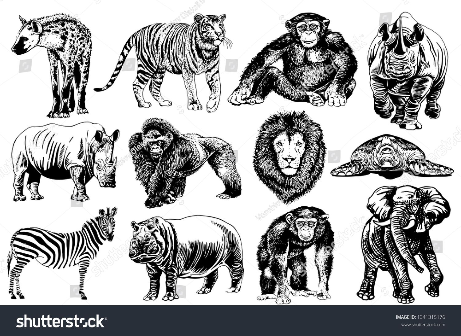 Graphical Set Of African Animals Isolated On White Background Vector Illustration Ad Affiliate African Animals In 2020 African Animals Stock Illustration Animals