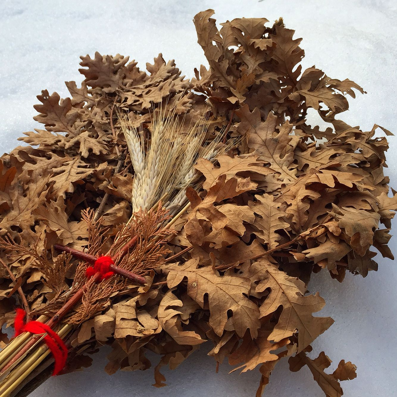 Badnjak/Oak branchChristmas tradition Christmas decor
