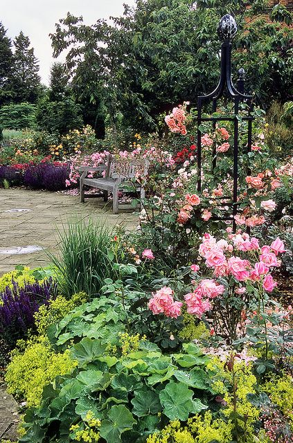 Royal National Rose Society Gardens   The Gardens Of The Rose,  Hertfordshire, UK | Garden Seat Surrounded By Roses (7 Of 12) By  Ukgardenphot.