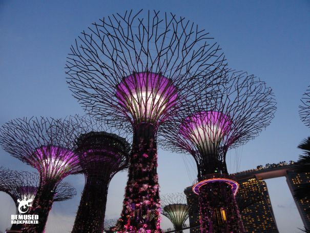 cb3ec5615436c3ff2dcf4bfd71a3d515 - Free Things To Do At Gardens By The Bay