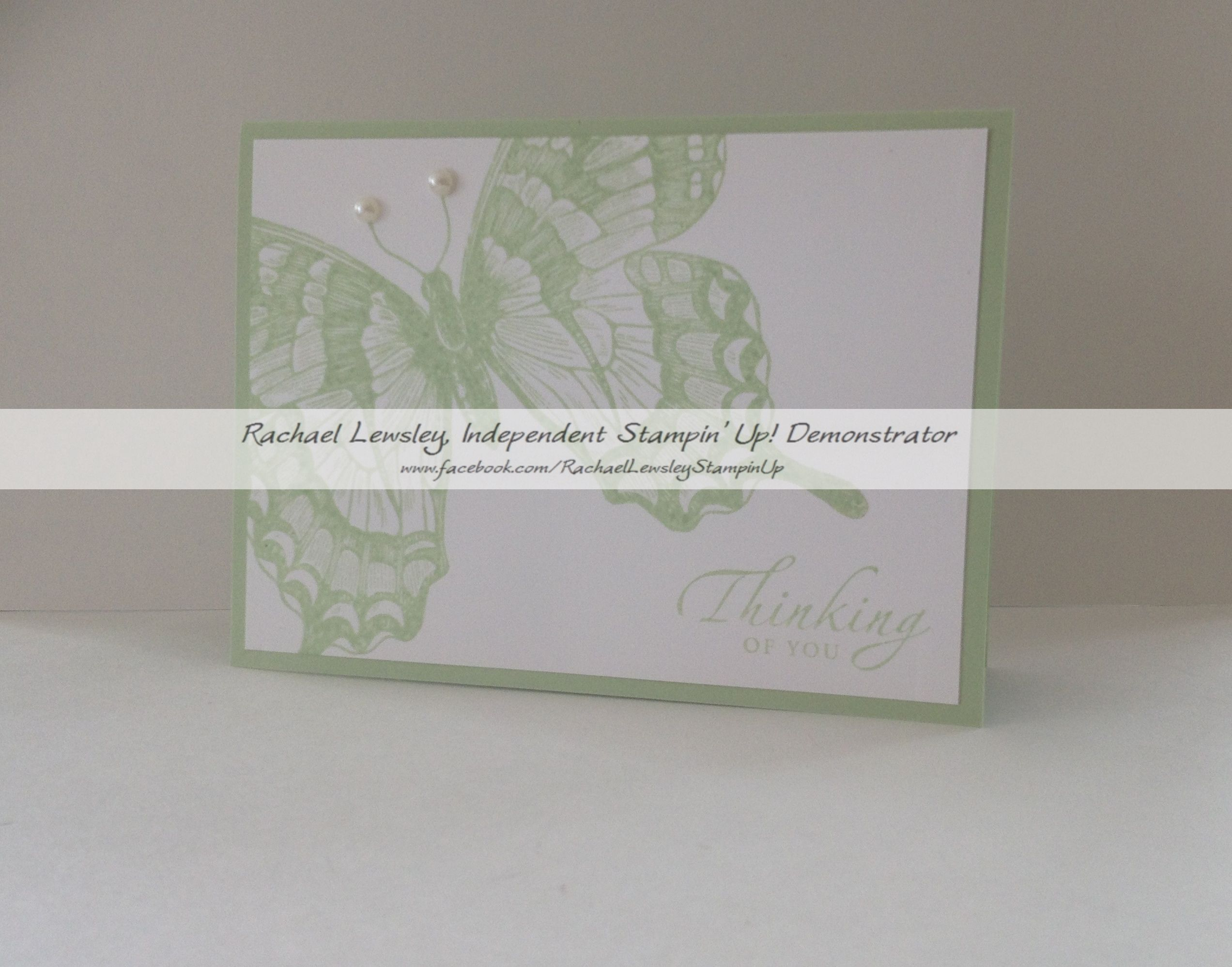 pistachio pudding sincere salutations swallowtail sympathy card my