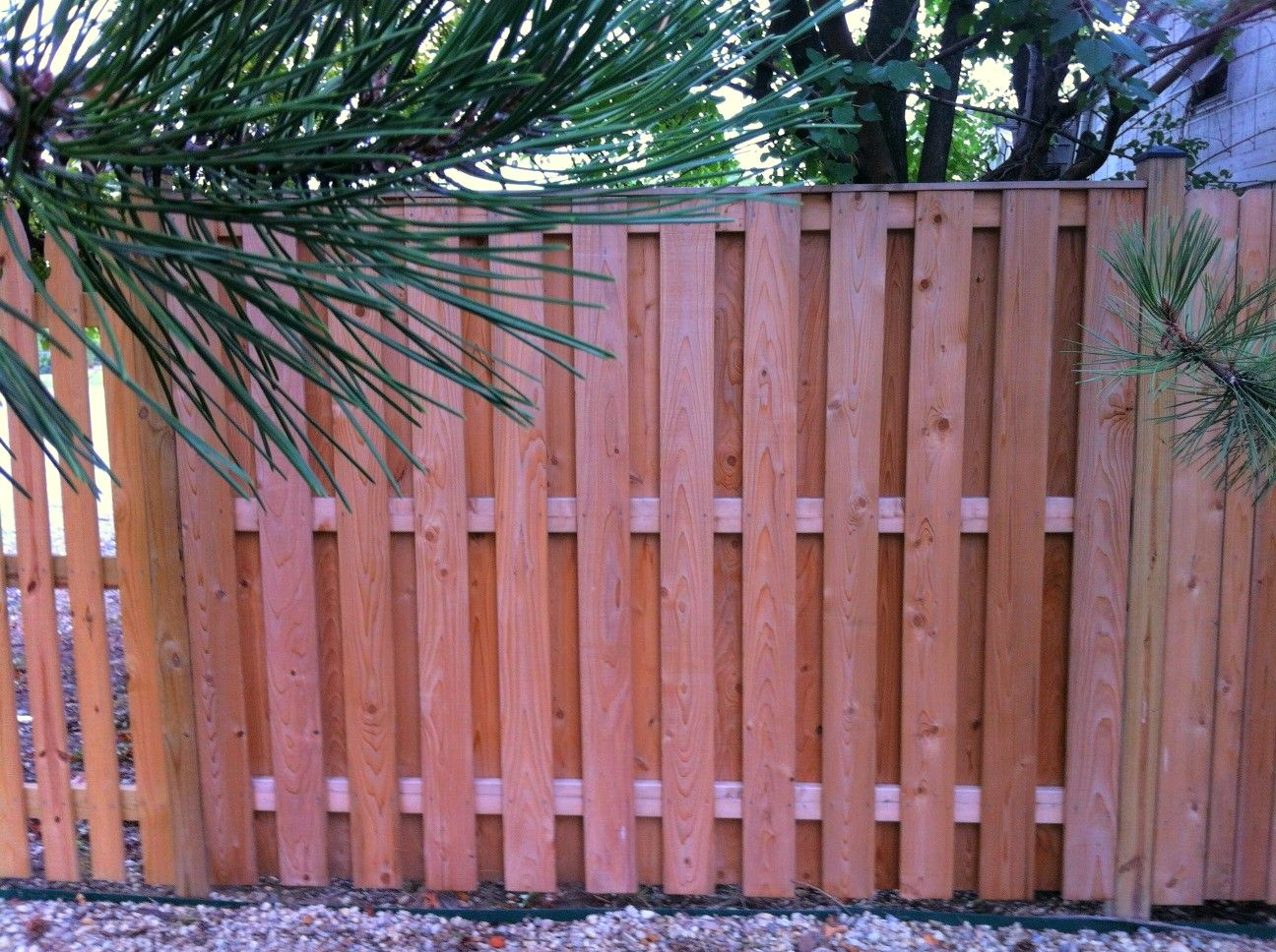 Our New 1x6 Board On Board Shadowbox Fence In 3 Weeks Long Fence Installation Backyard Fences Backyard Design Fence Design