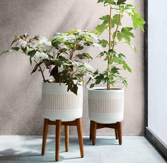 New mid-century turned wood leg planters at West Elm