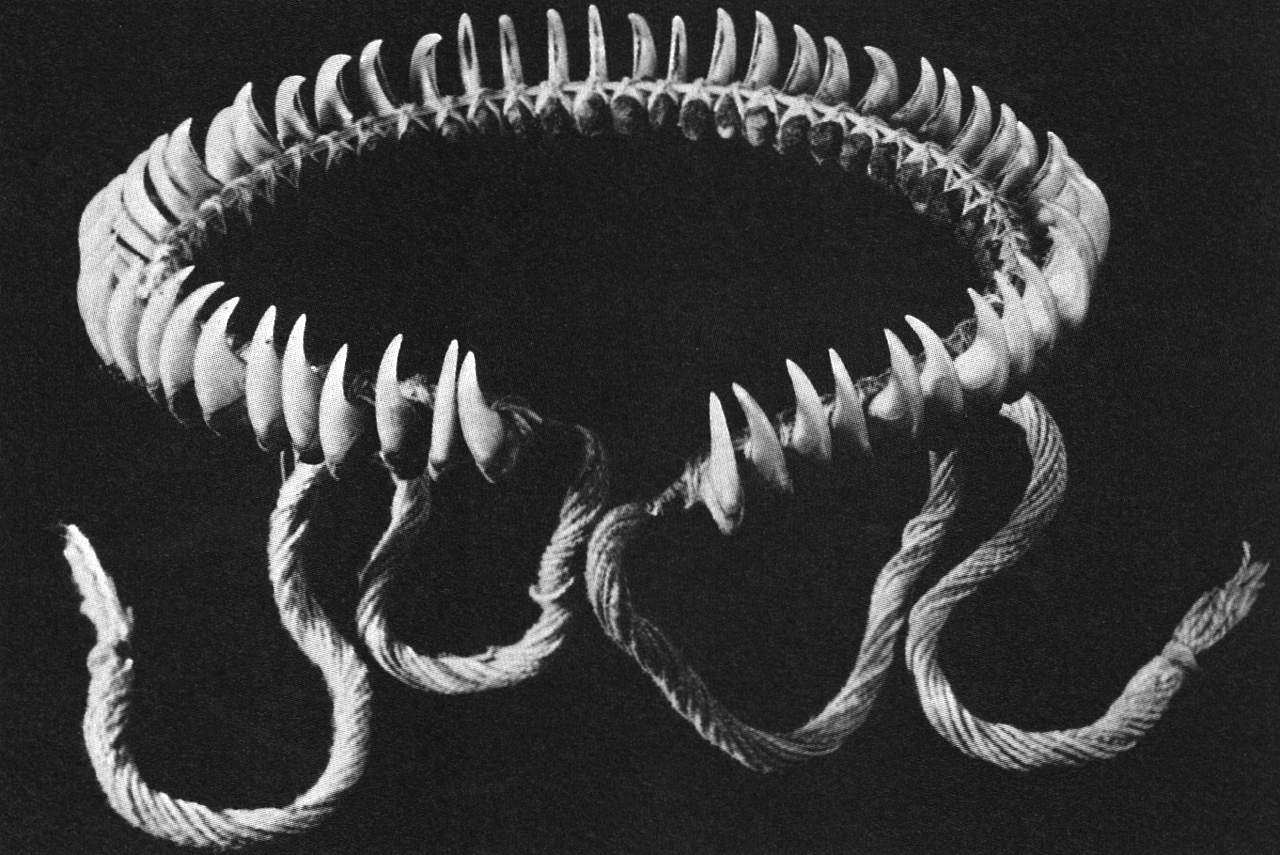 Chaoskampf Finsterforst A Necklace Made Of Jaguar Claws