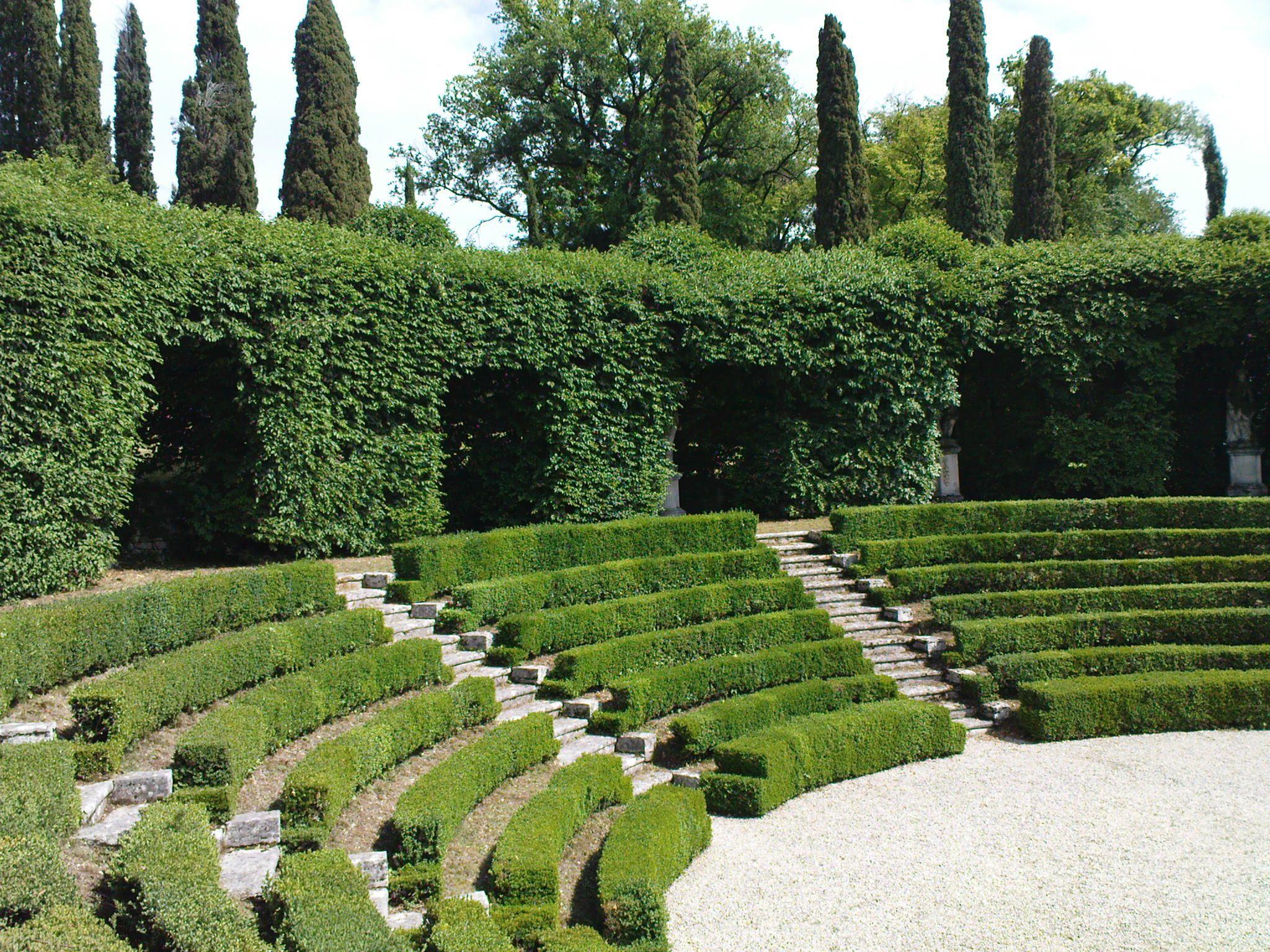 171 best elements boxwood hedges images on pinterest