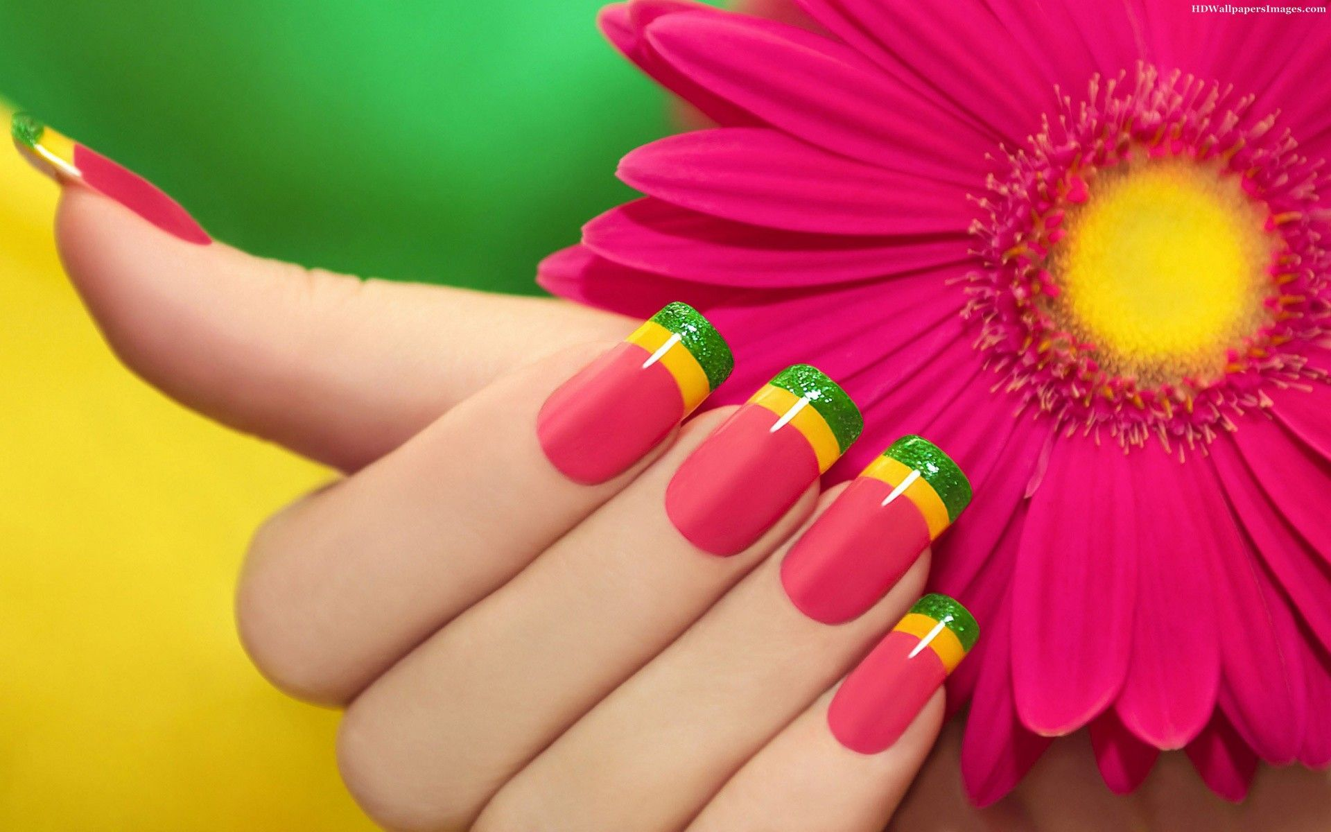 Erbera Flower With Hand Nail Polish Images Hd Wallpapers