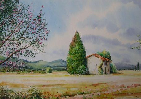 Tableau Peinture Provence Mas Printemps Paysages Aquarelle