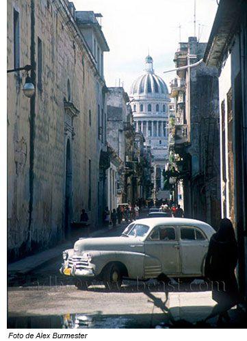 Conexion Cubana - El loco de la Habana Vieja