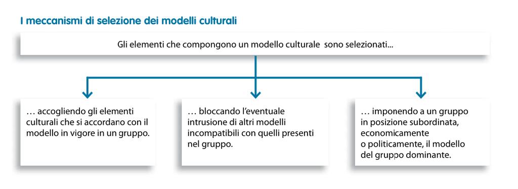 I meccanismi di selezione dei modelli culturali #appuntiantropologia