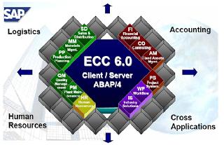 what is sap module sap modules list sap erp modules sap basis rh pinterest com SAP Single Instance Architecture Diagram SAP Org Structure Diagram