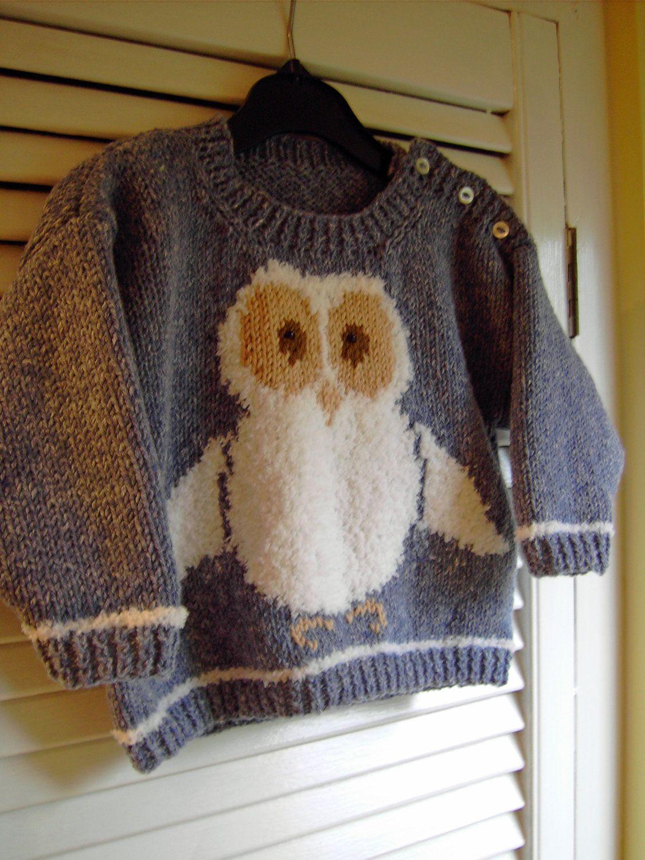 Owl sweater thinking of cornelius whitewood pinterest owl owl sweater sweater knitting patternsbaby bankloansurffo Images