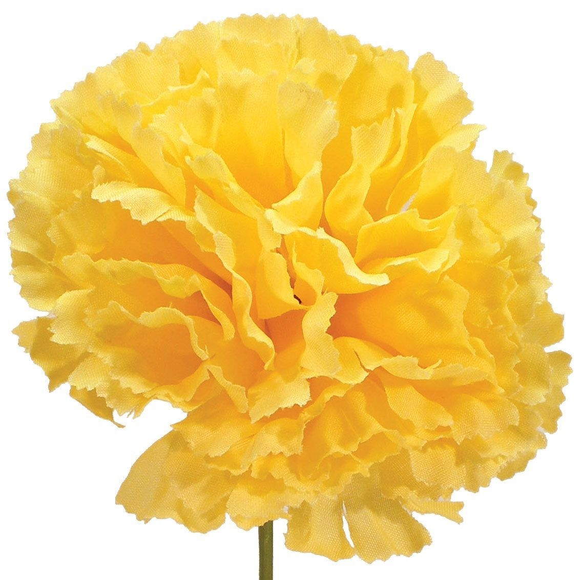 Box Of 100, Large 7 5 Inch Carnation Pick For Party, Wedding