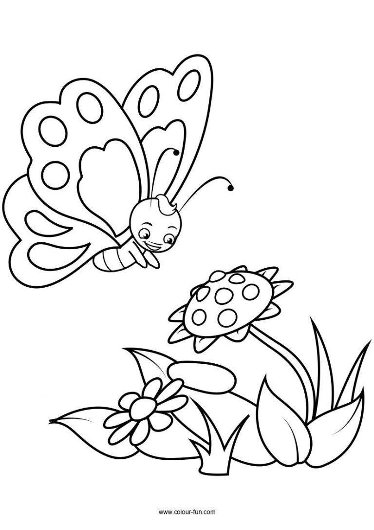 Butterfly Pages Colour Fun Butterfly Coloring Page Coloring Pages Flower Coloring Pages [ 1087 x 768 Pixel ]