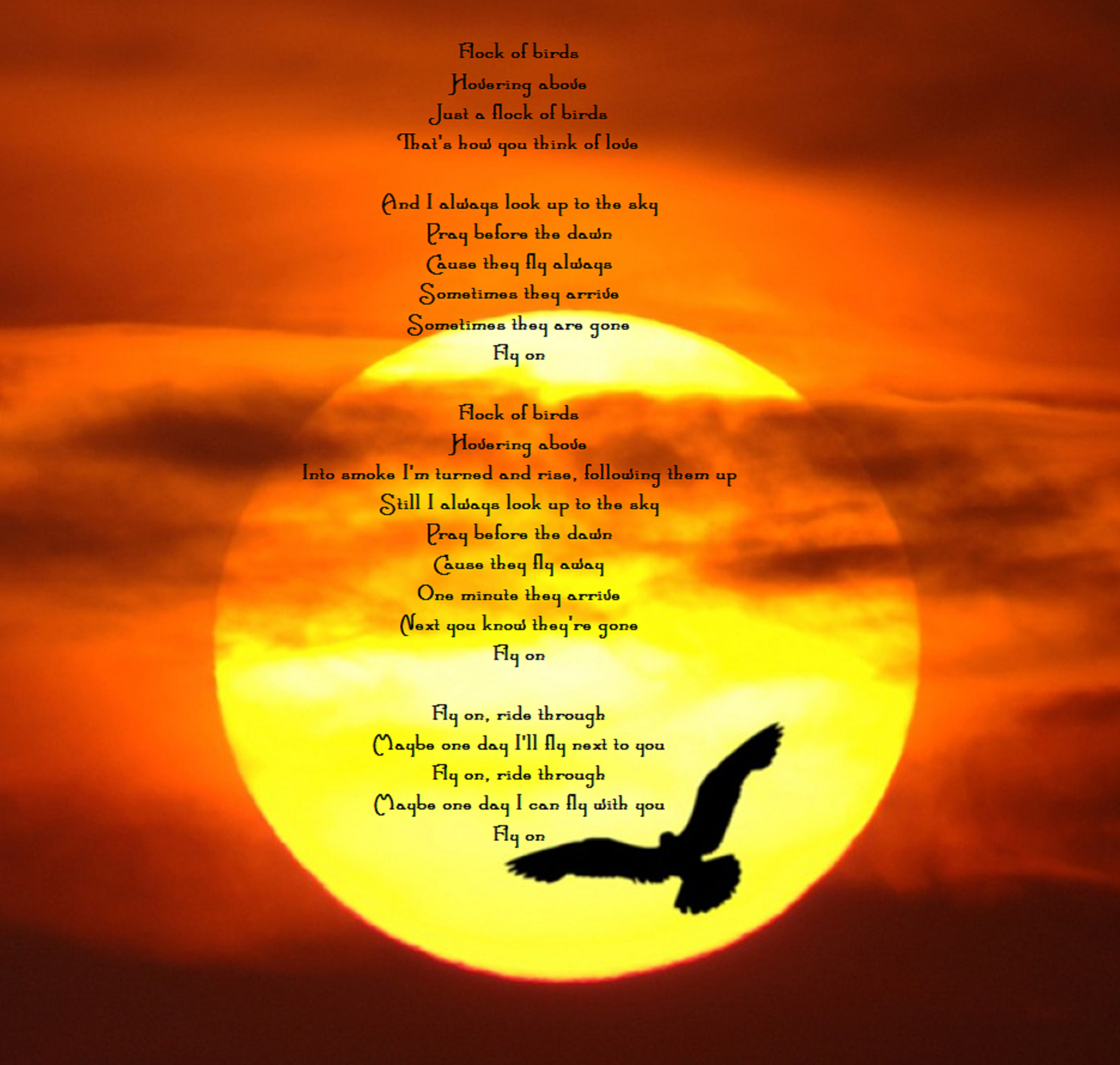 Christmas Light Coldplay Lyrics Triumph Bonneville T140v Wiring Diagram O Fly On Nice Pinterest