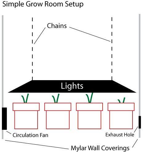 Growing marijuana indoors guide and tips grow room for Grow room design plans