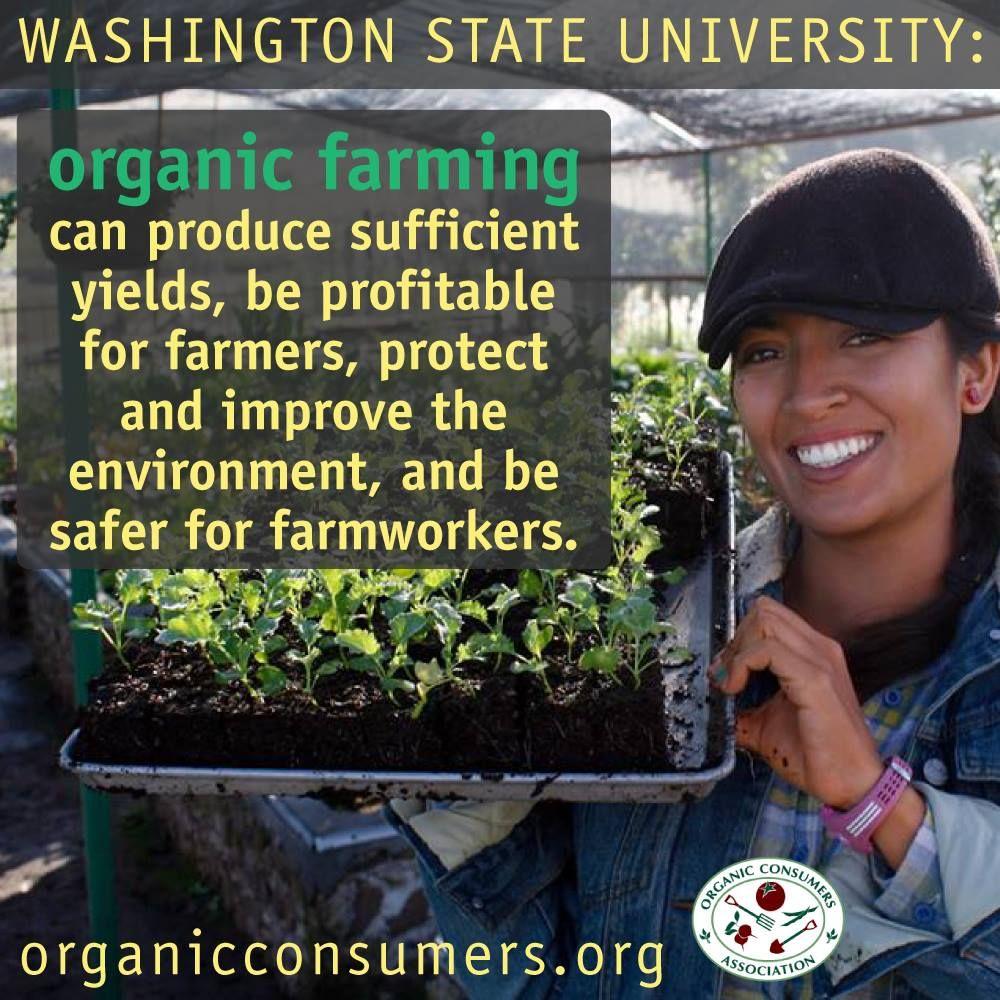 cb43c8c6f68f1980fbb4d82d73b7f383 - Texas Organic Farmers And Gardeners Association