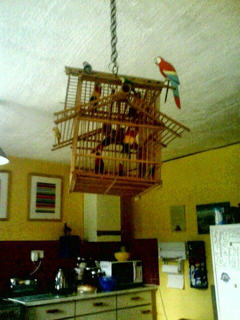 My bamboo birdcage with fake birds!