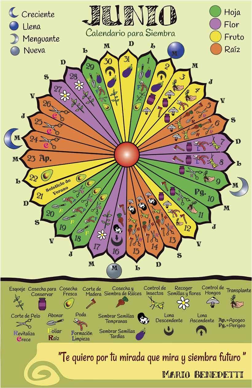 Calendario Lunar De Siembra.Pin De Comuna Cariagua En Siembra Huerto Hurbano Calendario Lunar